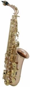 Saxofon Eb-Alt Roy Benson AS-202G