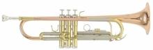 Trompeta Bb Roy Benson TR-202G