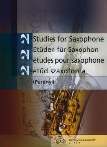 Perényi Éva, Perényi Péter: 222 Studies for Sa...